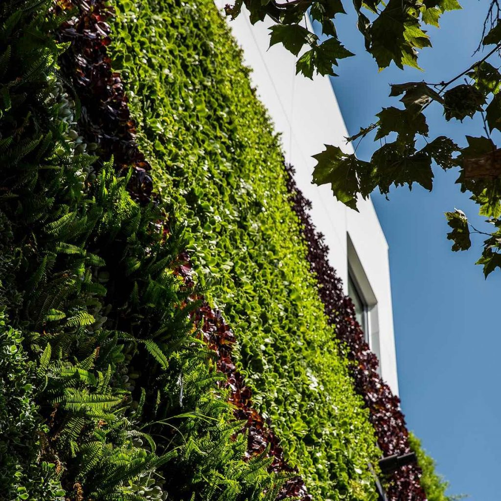 07mad_gardenhouse_green_wall_photo_by_manolo_langis