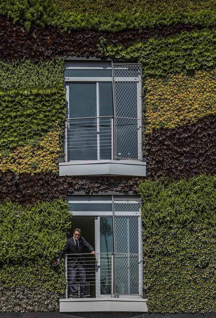 06mad_gardenhouse_green_wall_photo_by_manolo_langis