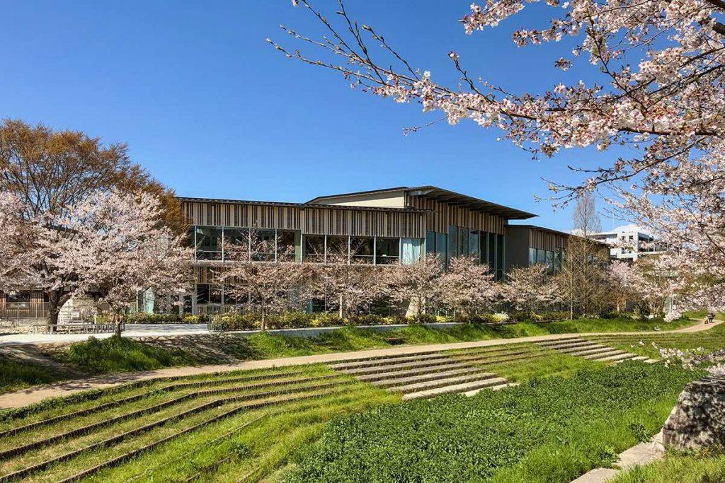 Biblioteka Moriyama | Kengo Kuma 02 Kawasumi・Kobayashi Kenji Photograph Office