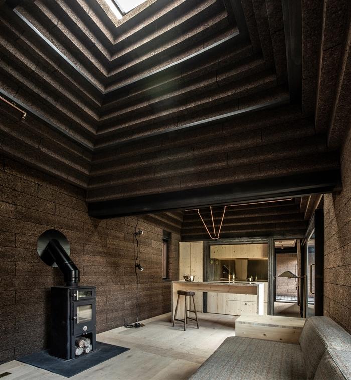 projekty domów parterowych corkhouse Magnus Dennis 01
