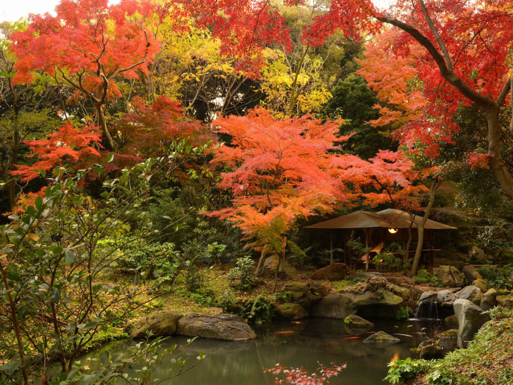 Ogród japoński Rikugien