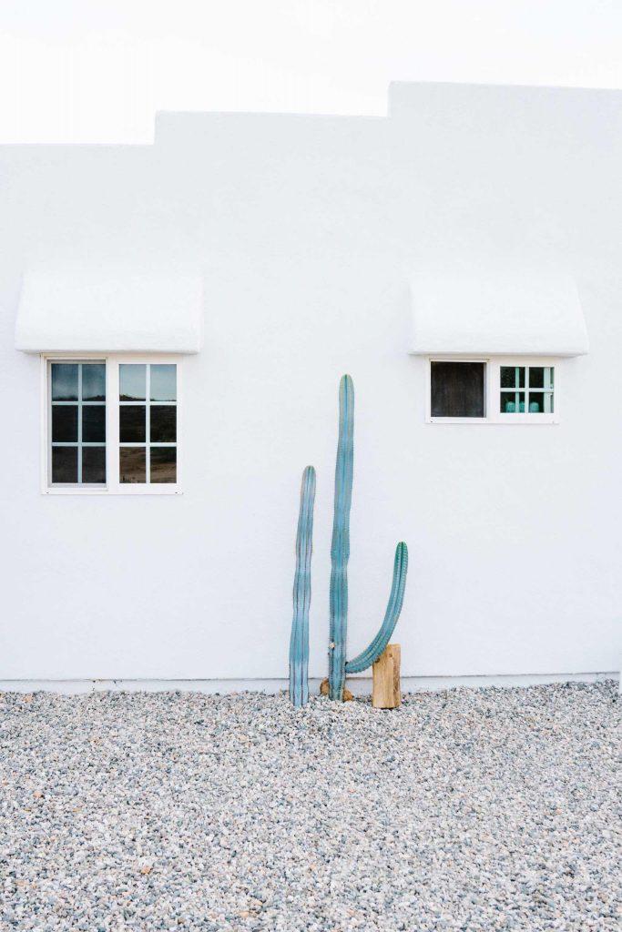 carlos-naude-casa-mami-working-holiday-studio-09