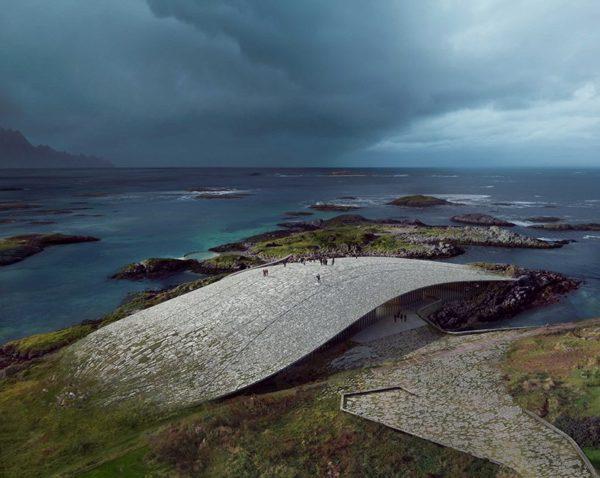 norwegia dorte-mandrup-whale-andenes-01