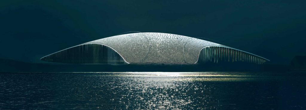 norwegia dorte-mandrup-whale-andenes-02