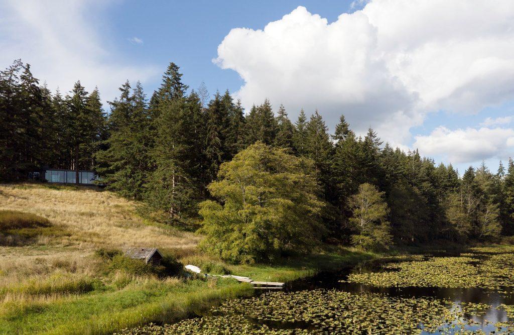 Dom w lesie w Whidbey Island