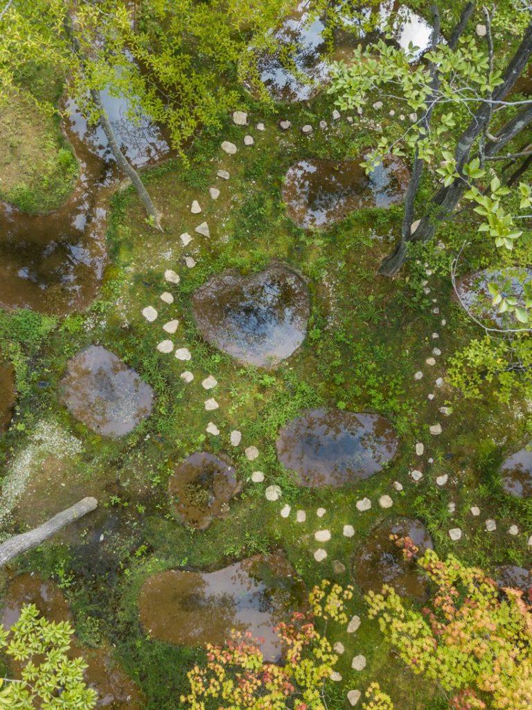 w ogrodzie junya-ishigami-associates-art-biotop-water-garden_04