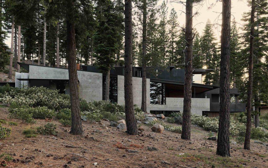 lookouthouse_ faulkner architects _photo_joefletcher 03