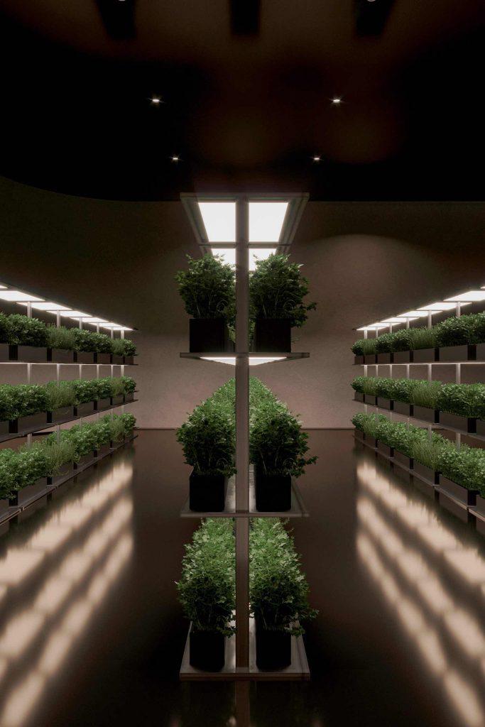 underground-house-plan-b-sergey-makhno_11