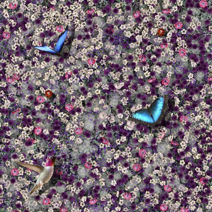 Augmented Nature by Elena Manferdini  /  Tick by KTA