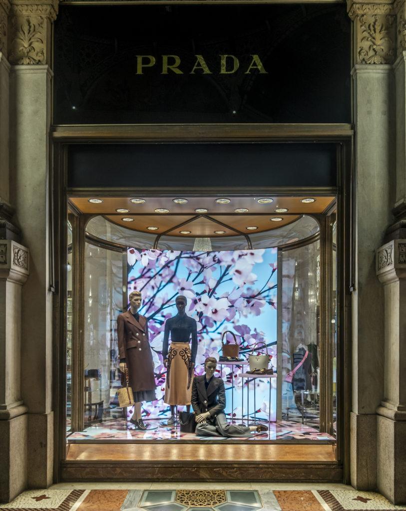kwiat wiśni Prada Galleria Vittorio Emanuele II_Milano_Thomas Demand_02