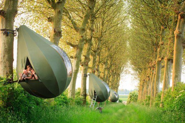 namioty w kształcie łzy-belgian-forest-01